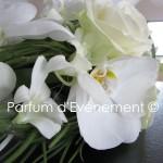 Blog 2011-116