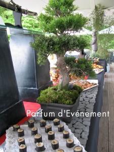 Blog 2011-127