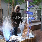 Blog 2011-18
