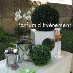 Blog 2011-139