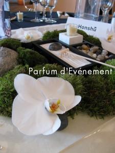 Blog 2011-130