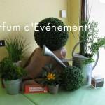 Blog 2011-138